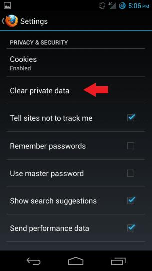 Firefox Private Data