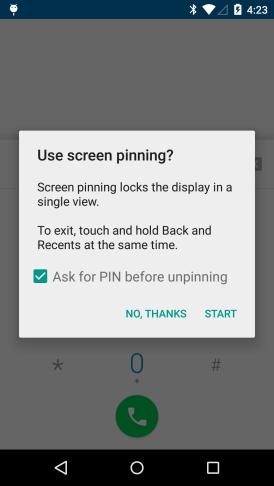 screen pinning