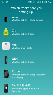 Fitbit 003
