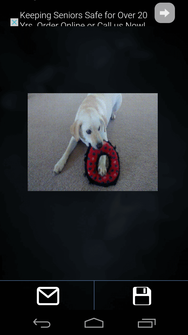 video-to-gif-save-or-share