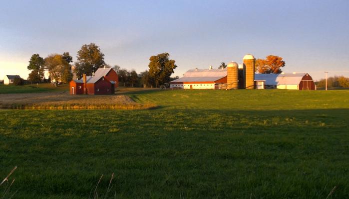 Farming Games Vs. Feature Image