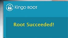 Kingo-Root