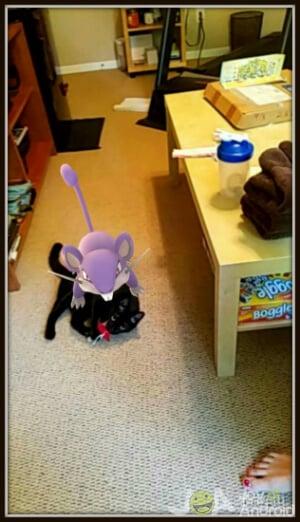 Pokemon Go Tables Turned