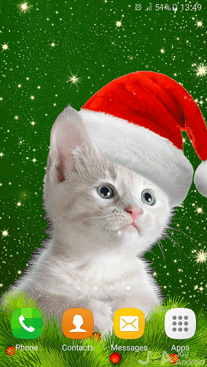 cats christmas wallpapers
