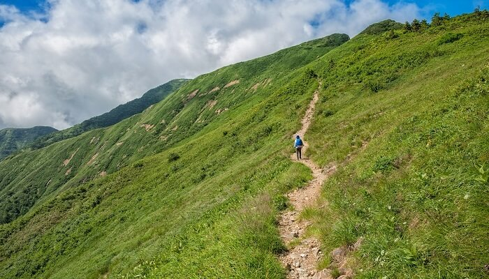 Best Trekking Apps for Android
