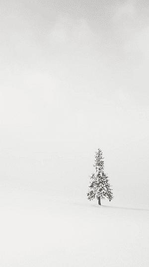 Minimalist Christmas Tree Wallpaper