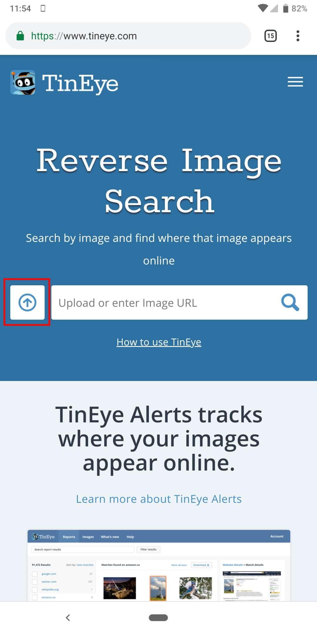 tin-eye-reverse-image-search