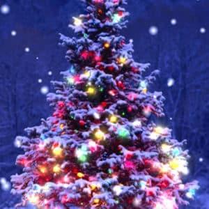Christmas Live Wallpaper Sergey Konyukhov
