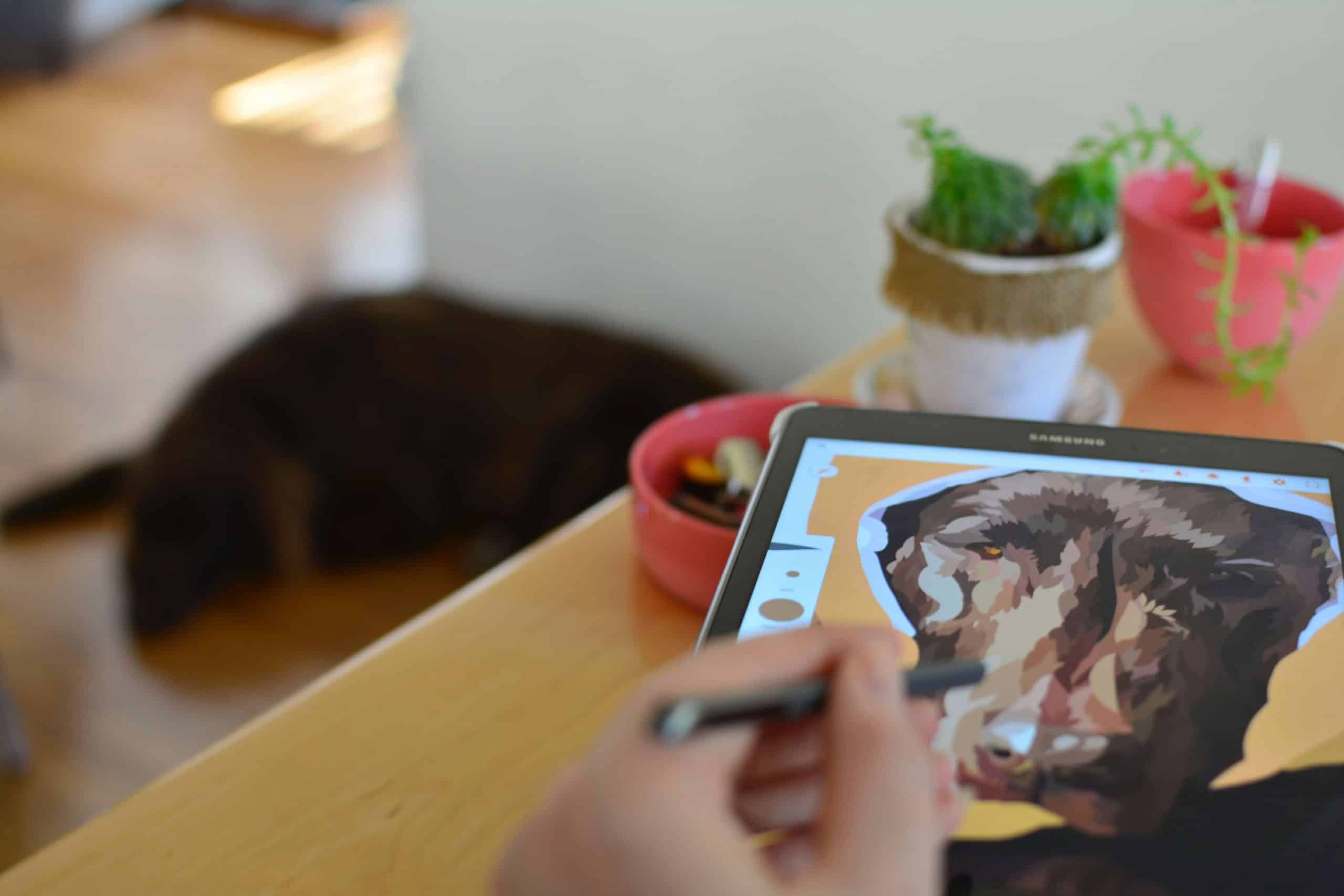 6 Great Android Tablets for Drawing: Drawing Tablets with Stylus